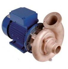 Насос 2,2 кВт, 230  В, WS 50 Гц, тип FB 65, всас. вых. 2  н.р., бронза